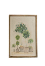 Potted Trees & Topiaries Canvas Wall Décor with Wood Frame