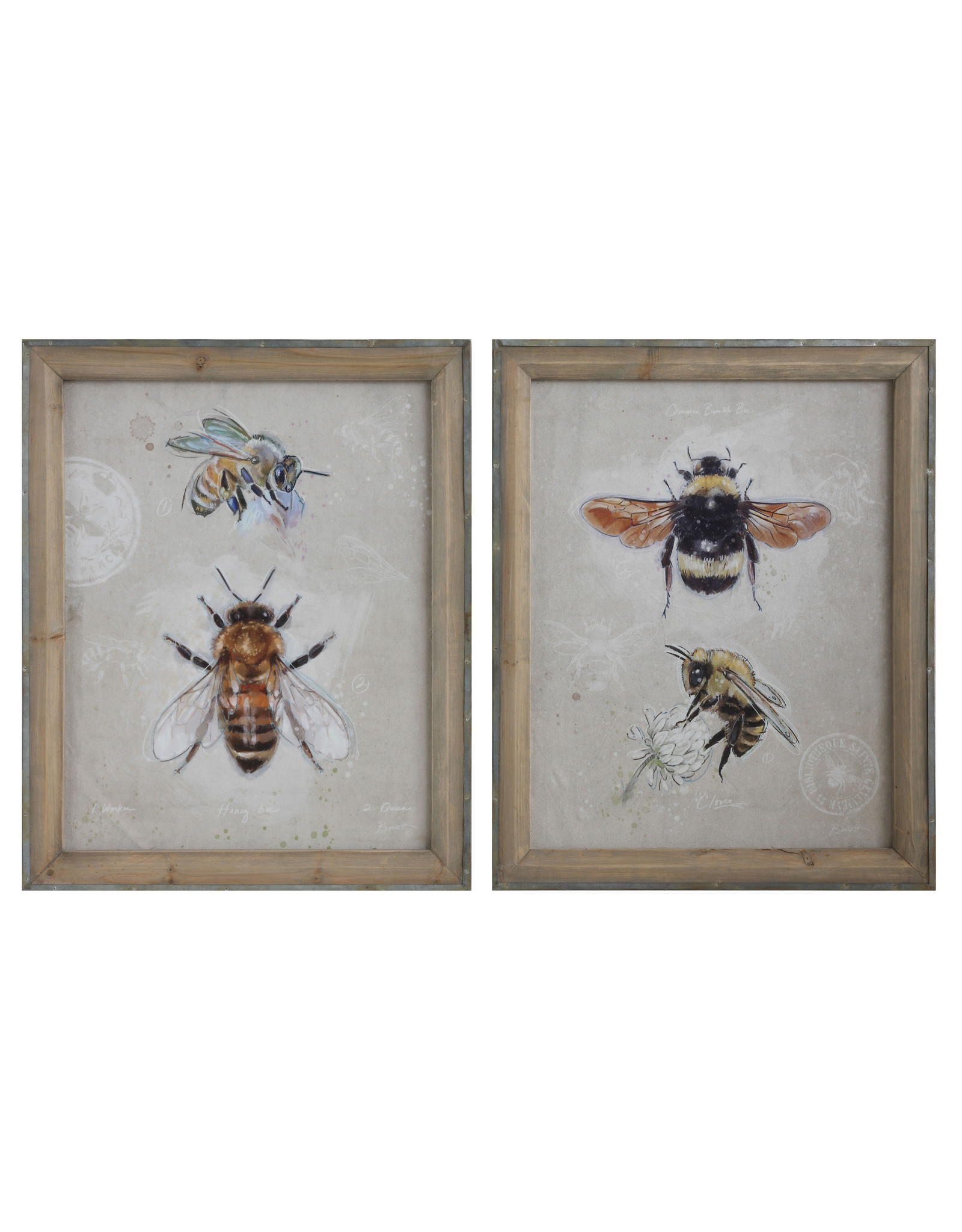 Wood Framed Canvas Wall Art with Bee Images (Set of 2 Designs)