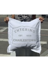 Marshes Fields and Hills Entering Charlestown 20 x 20 Pillow in Dorian Grey
