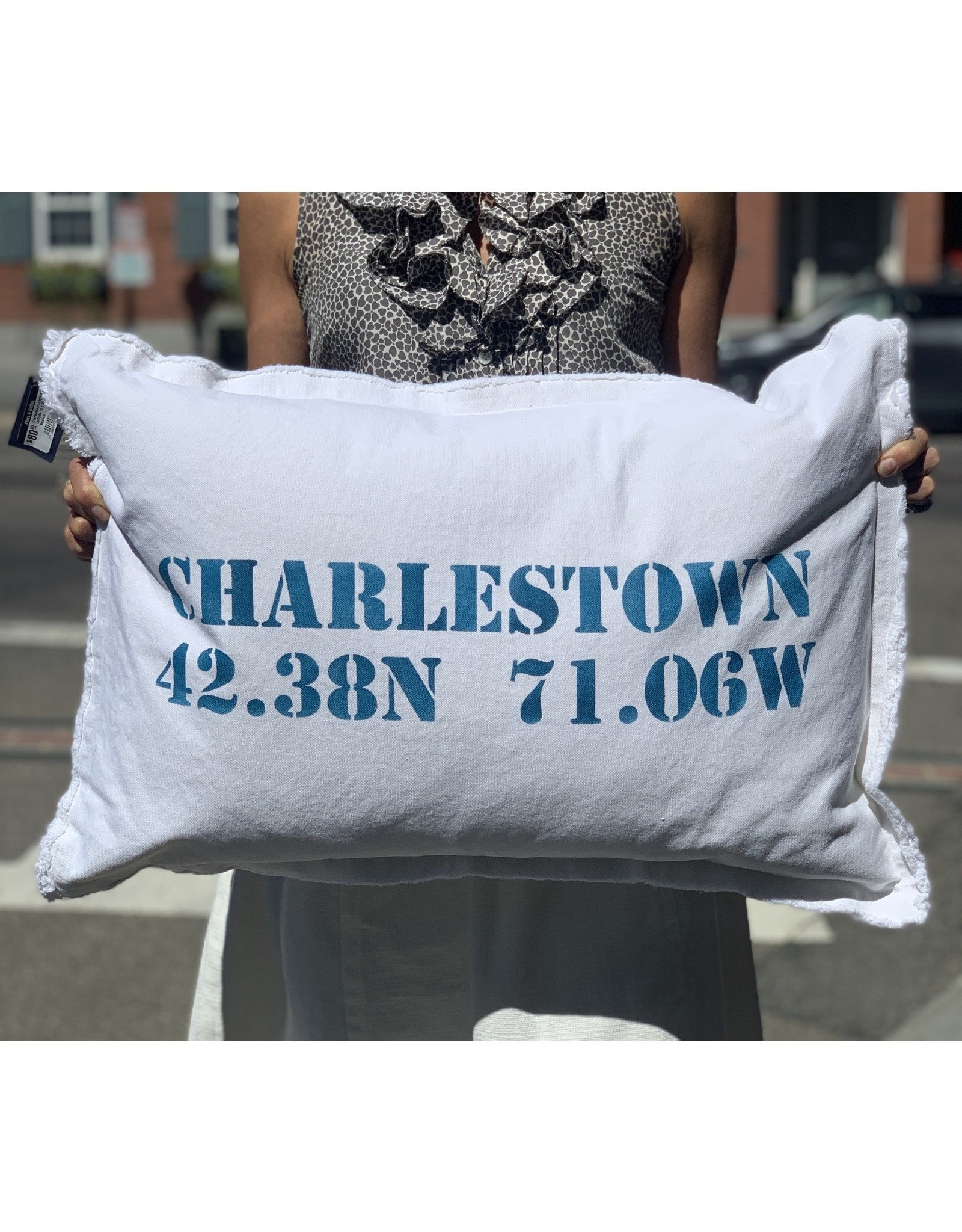 Marshes Fields and Hills Charlestown Longitude & Latitude 18 x 25 Pillow in Nautical Blue