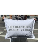 Marshes Fields and Hills Charlestown Longitude & Latitude 18 x 25 Pillow in Dorian Grey
