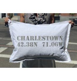 Marshes Fields and Hills Charlestown Longitude & Latitude 18 x 25 Pillow in Dorian Grey