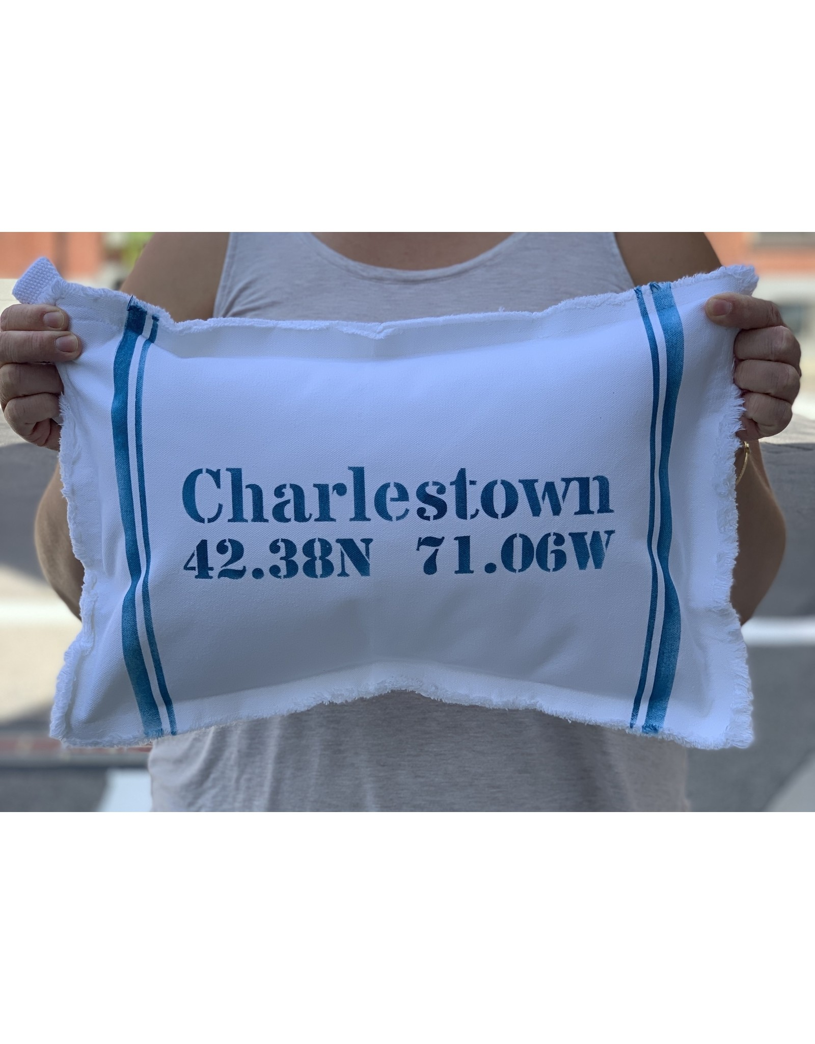 Marshes Fields and Hills Charlestown Longitude & Latitude 12 x 18 Pillow in Nautical Blue