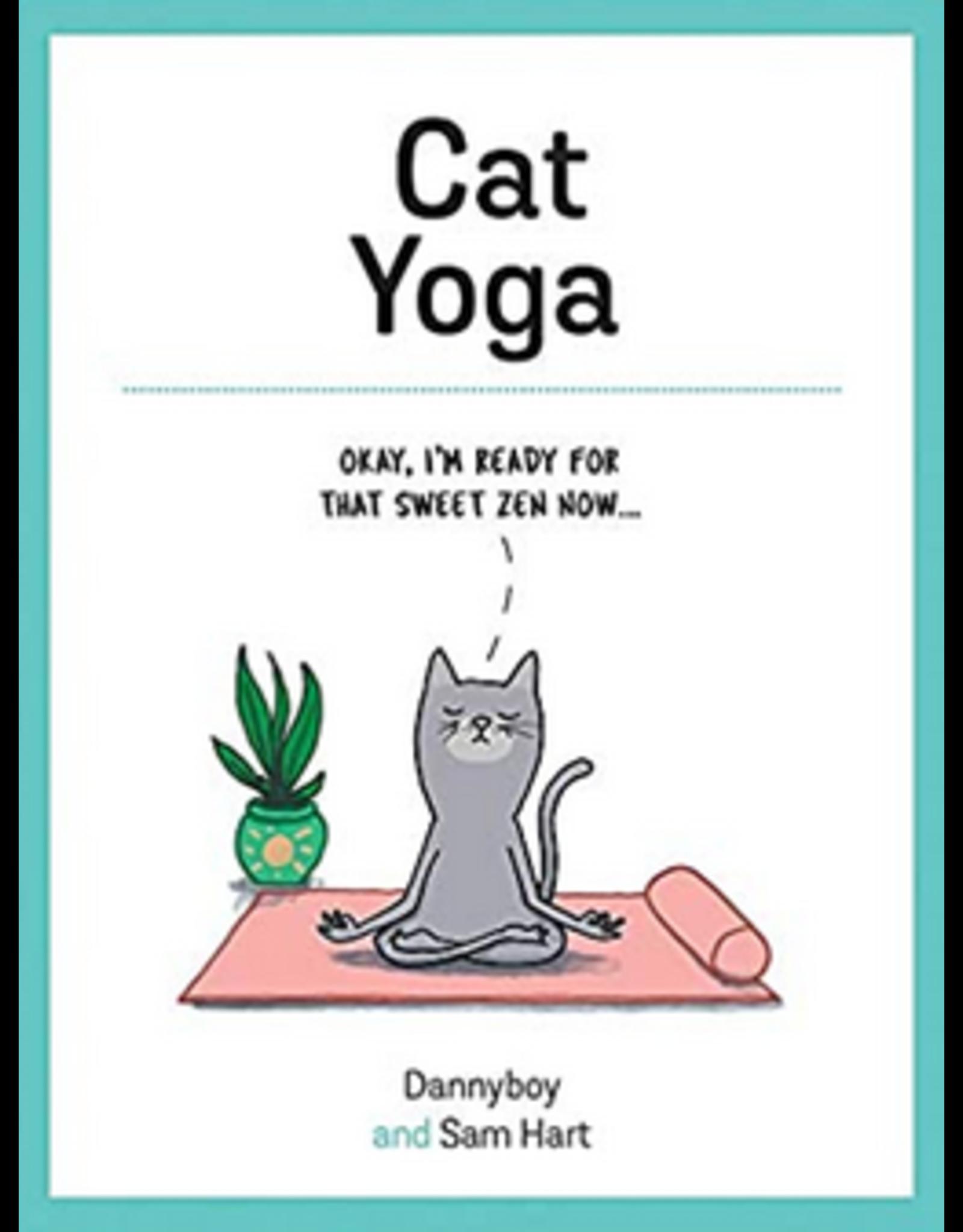Hachette Cat Yoga