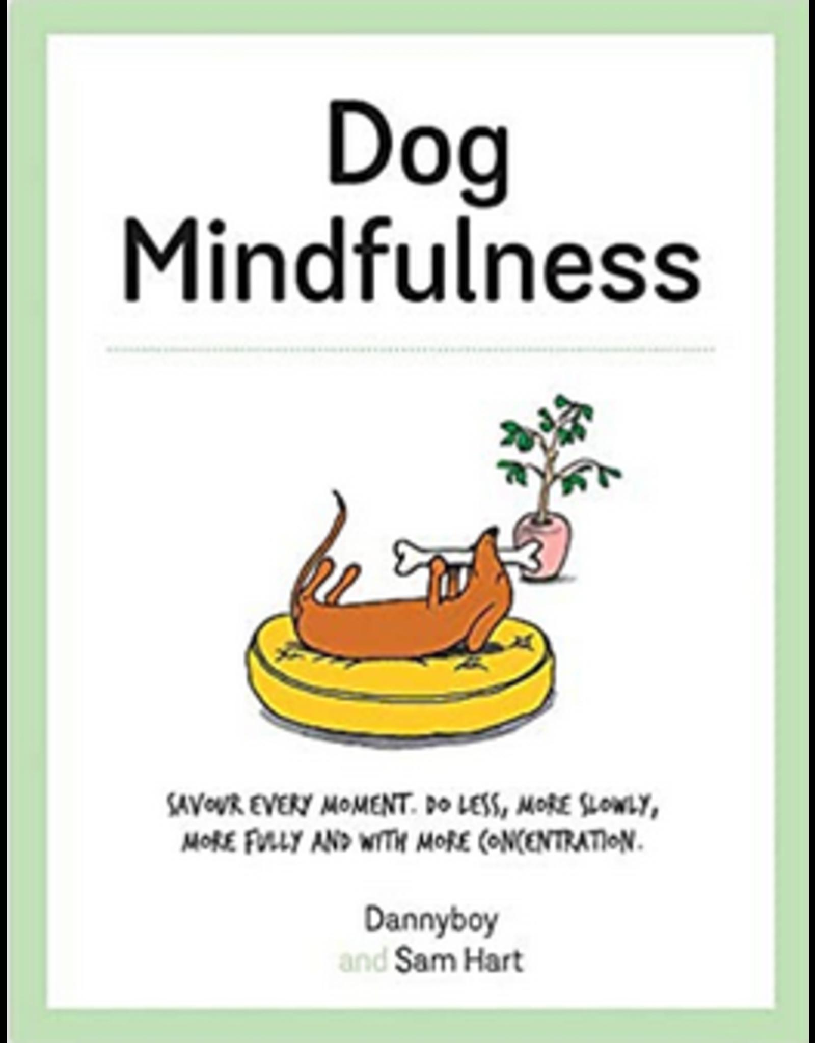 Hachette Dog Mindfulness