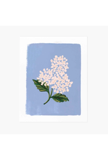 Rifle Paper Co. Hydrangea Bloom Blue Art Print 8x10