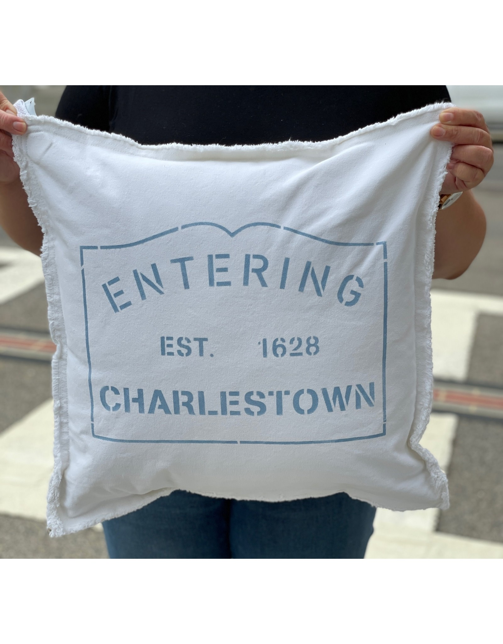 Marshes Fields and Hills Entering Charlestown 20 x 20 Pillow in Sky Blue