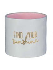 Grasslands Road Find Your Sunshine Planter