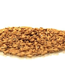 Wheat - Sonoran - Unmalted