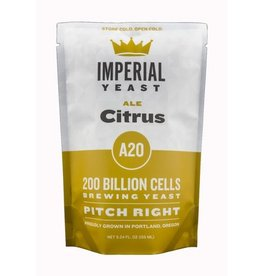 Imperial Yeast Citrus - A20
