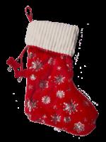 HuggleHounds 2020 Holiday Glitz Stocking For Dogs (Empty)