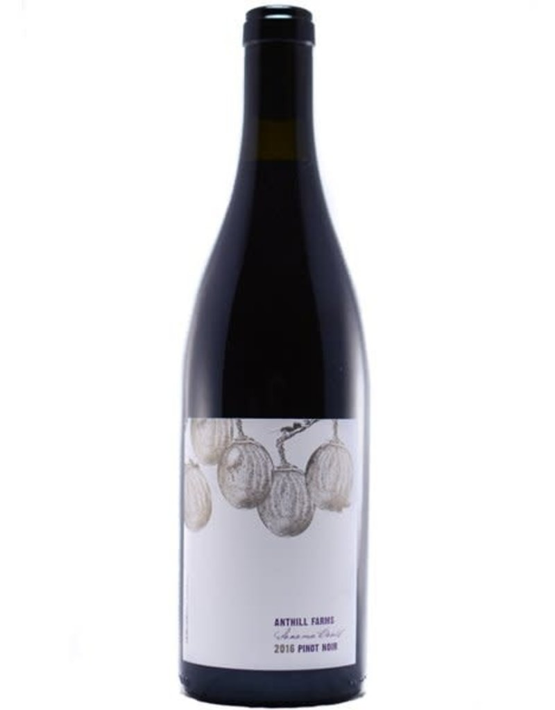 Anthill Farms 2017 Anthill Farms Pinot Noir Anderson Valley 750 ml