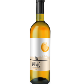 2019 Orgo Dila-O Rkatsiteli/Mtsvane Dry Amber Wine 750 ml