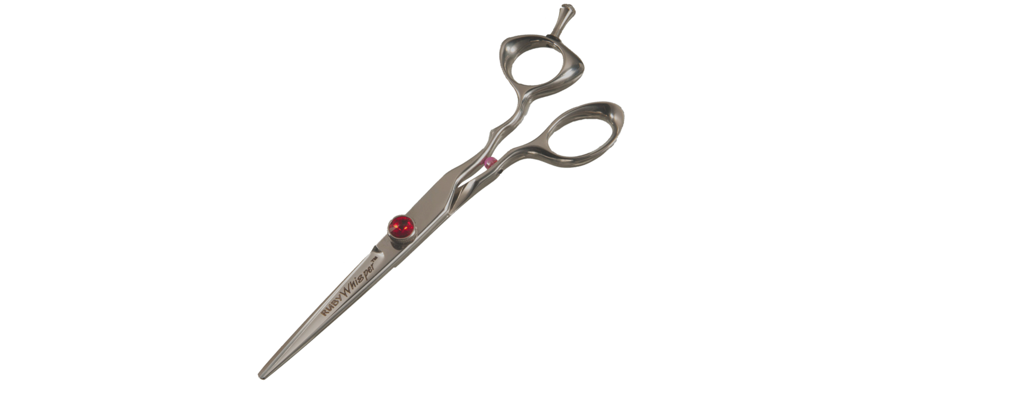 Professional Cutting Shears