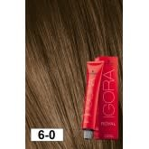6-0 Dark Blonde 60g - Igora Royal by Schwarzkopf