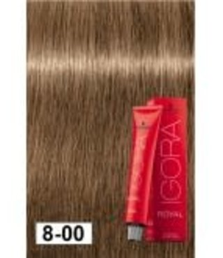 8-00 Light Blonde Extra  60g - Igora Royal by Schwarzkopf