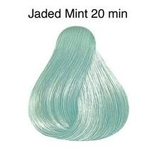 Color Touch Instamatic Jade Mint Demi-Permanent Hair Colour 57g