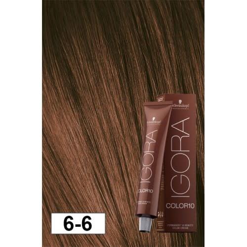 6-6 Color10 Dark Blonde Auburn  60g - Igora Color10 by Schwarzkopf