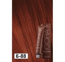 6-88 Color10 Dark Blonde Extra  60g - Igora Color10 by Schwarzkopf