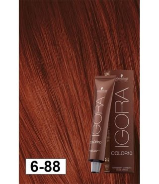6-88 Color10 Dark Blonde Extra  60g - Igora Color10 by Schwarzkopf