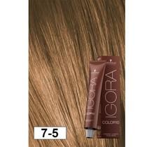 7-5 Color10 Medium Blonde Beige Gold  60g - Igora Color10 by Schwarzkopf