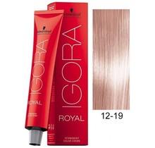 12-19 Special Blonde Cendre Violet HighLift 60g - Igora Royal by Schwarzkopf