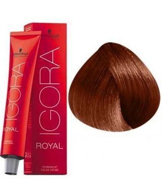 7-77 Medium Blonde Copper Extra  60g - Igora Royal by Schwarzkopf