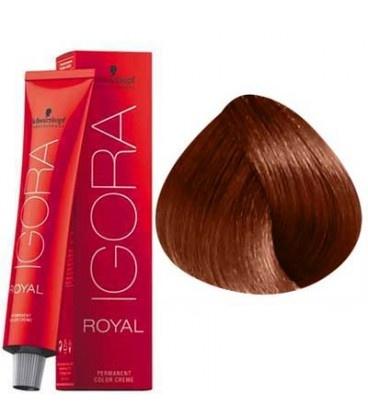 7-77 Medium Blonde Copper Extra  60g - Igora Royal by Schwarzkopf