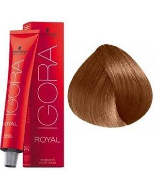 7-65 Medium Blonde Chocolate Gold  60g - Igora Royal by Schwarzkopf