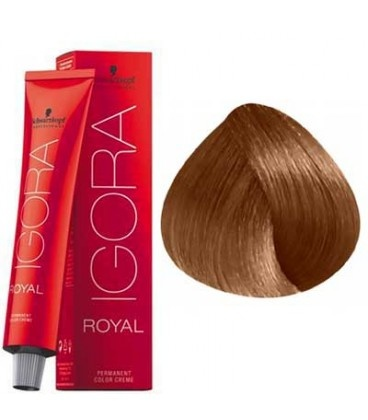 7-65 Medium Blonde Chocolate Gold  60g - Igora Royal by Schwarzkopf