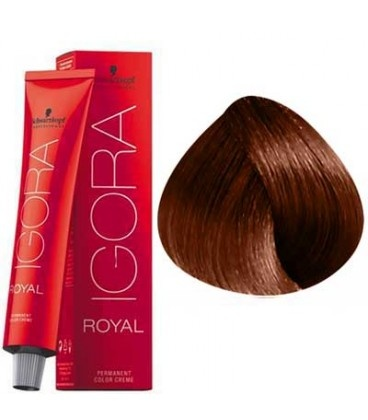 6-77 Dark Blonde Copper Extra 60g - Igora Royal by Schwarzkopf
