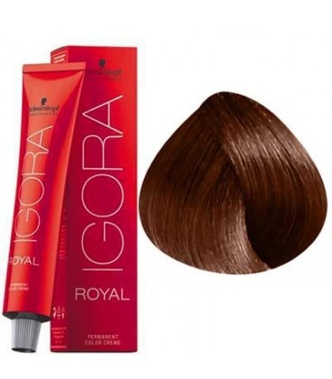6-68 Dark Blonde Auburn Red 60g - Igora Royal by Schwarzkopf