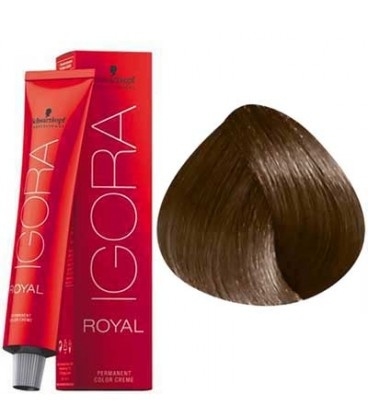 6-65 Dark Blonde Chocolate Gold 60g - Igora Royal by Schwarzkopf