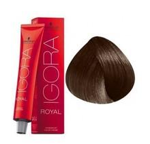 6-6 Dark Blonde Chocolate 60g - Igora Royal by Schwarzkopf