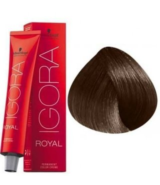 6-6 Dark Blonde Chocolate 60g - Igora Royal by Schwarzkopf