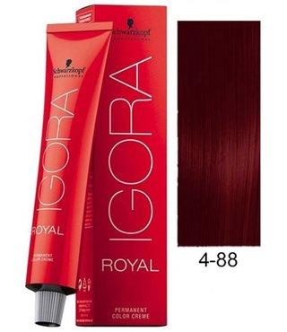 4-88 Medium Brown Red Extra 60g - Igora Royal by Schwarzkopf