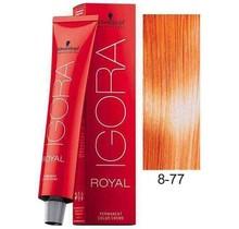 8-77  Light Copper Blonde Extra 60g - Igora Royal by Schwarzkopf