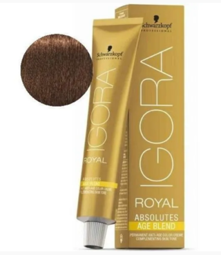 6-460 Dark Blonde Biege Chocolate Natural 60g - Igora Royal Absolutes by Schwarzkopf