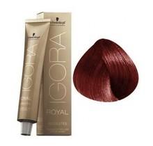 5-80 Light Brown Red Natural 60g - Igora Royal Absolutes by Schwarzkopf
