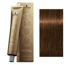 6-50 Dark Blonde Gold Natural 60g - Igora Royal Absolutes by Schwarzkopf