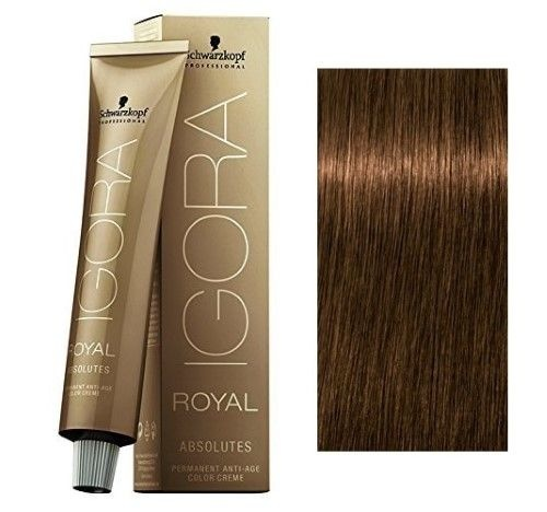 6-50 Dark Blonde Gold Natural 60g - Igora Royal Absolutes by Schwarzkopf