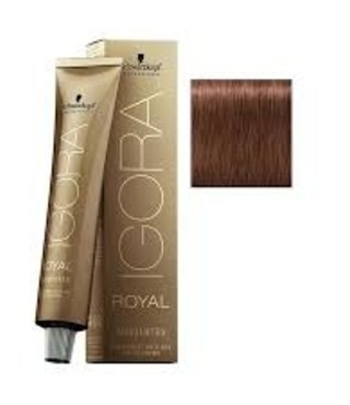 6-580 Dark Blonde Gold Red Natural 60g - Igora Royal Absolutes by Schwarzkopf