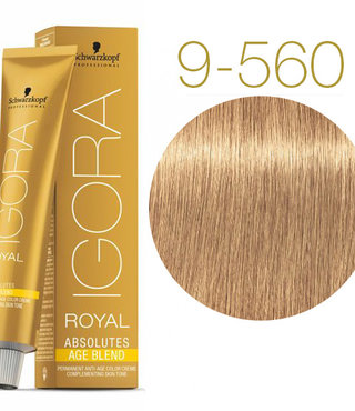 9-560 Extra Light Blonde Gold Chocolate 60g - Igora Royal Absolutes by Schwarzkopf