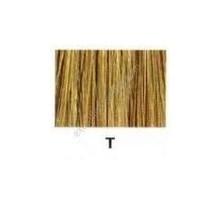 Redken Color Fusion Blonde Glam T