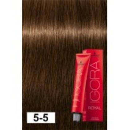 5-5 Light Brown Gold 60g - Igora Royal by Schwarzkopf