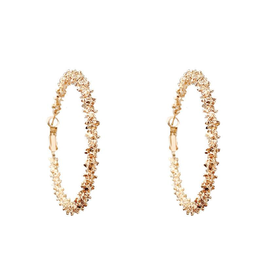 Treasure Jewels Leslie Hoop Earring