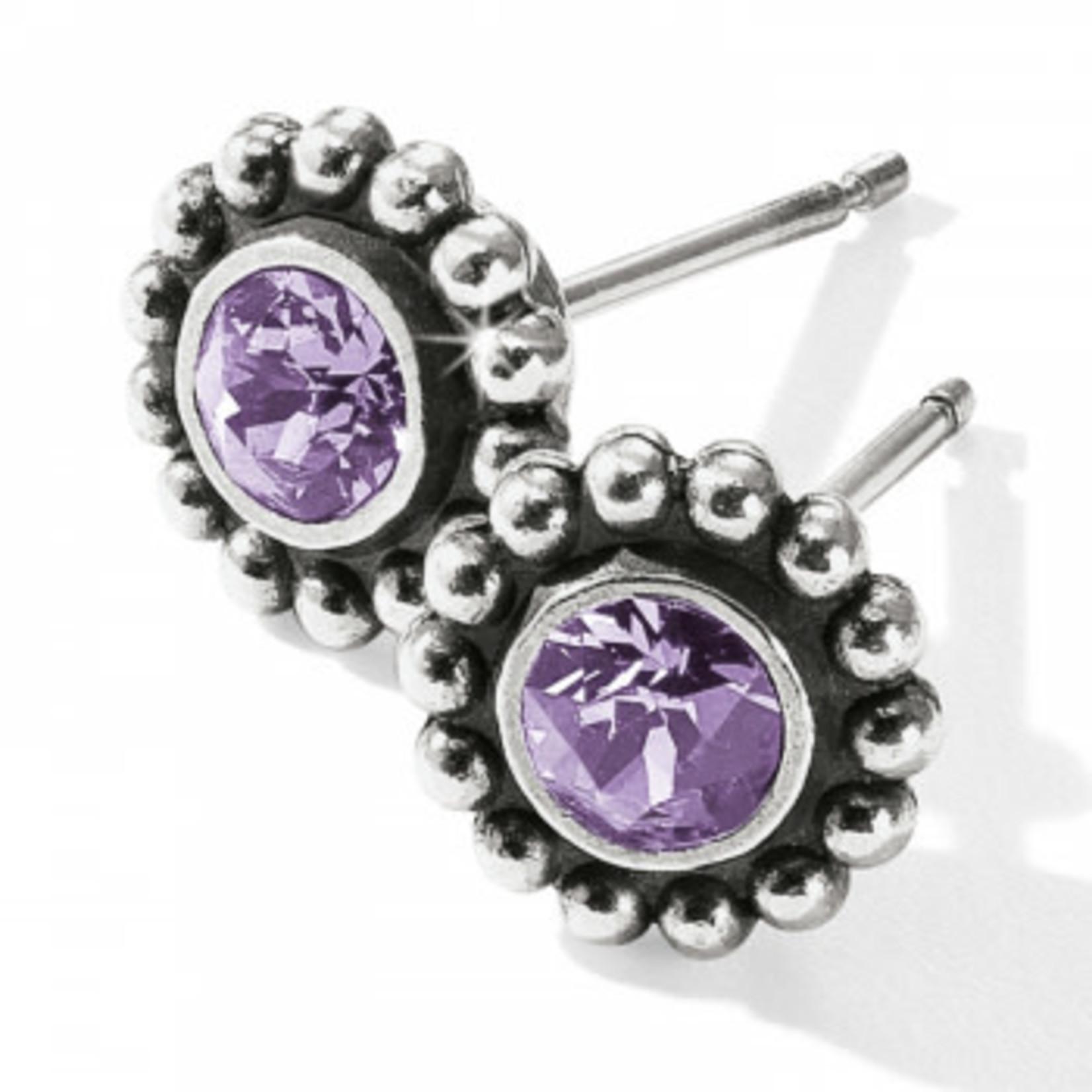 Brighton Twinkle Mini Post Tanzanite Earrings