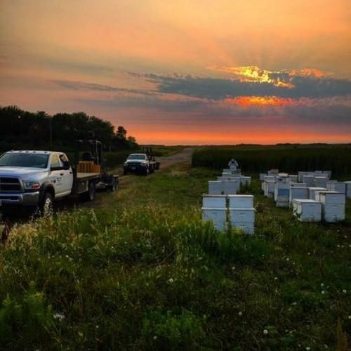 The Business of Beekeeping Class November 2, 2019