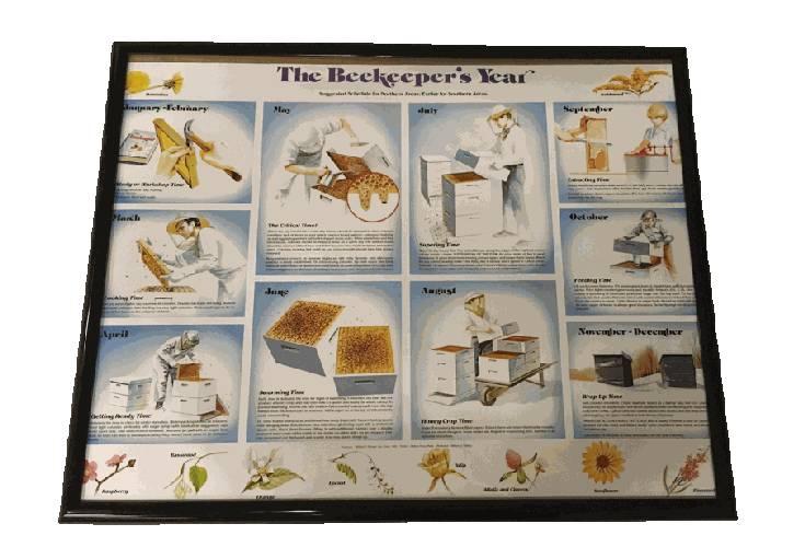 Beekeepers Year Chart