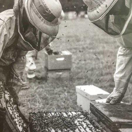 2019 Beginning Beekeeping Class